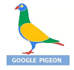 Google-pigeon-seo-diseño-web-coruña